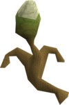 Gout tuber plant.png
