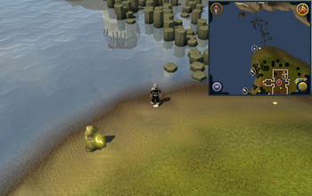 Cryptic clue north of Barbarian Outpost.png