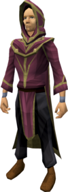 Wicked robe outfit equipped (male).png: Wicked hood equipped by a player