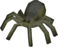 Spider Courtier.png