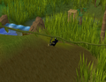 Ape Atoll Agility Course (Vine).png