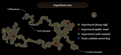Experiment cave map.png