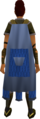 Team-21 cape equipped (female).png