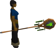 Banner of Sliske (tier 2) equipped.png: Banner of Sliske equipped by a player