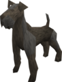 Terrier (black) pet.png