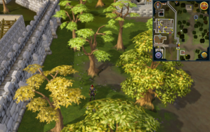 Compass clue Varrock east of the museum.png