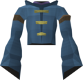 Avalani's robe top detail.png
