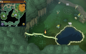 Scan clue Zanaris south-west of central fairy ring.png