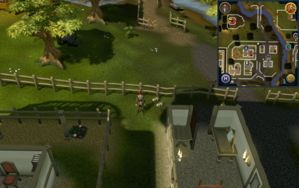 Compass clue Ardougne west of Elena's house.png