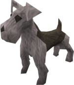 Terrier puppy (grey) pet.png