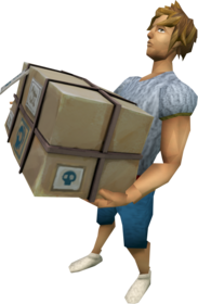 Delivery package equipped.png: Delivery package equipped by a player