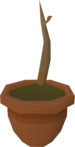 Curry sapling detail.png