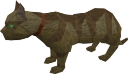 Overgrown cat (brown) pet.png