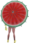 Watermelon parasol equipped.png