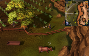 Compass clue Lumbridge in potato field north of cow pen.png